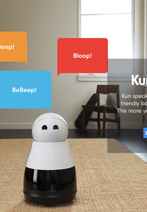 companion robot assistant